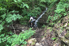 Mountain Biking on the Back 40 Trails - 2