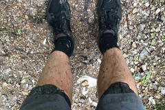 Mountain Biking on the Back 40 Trails - 3
