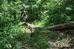 Mountain Biking at Coler Preserve - 2