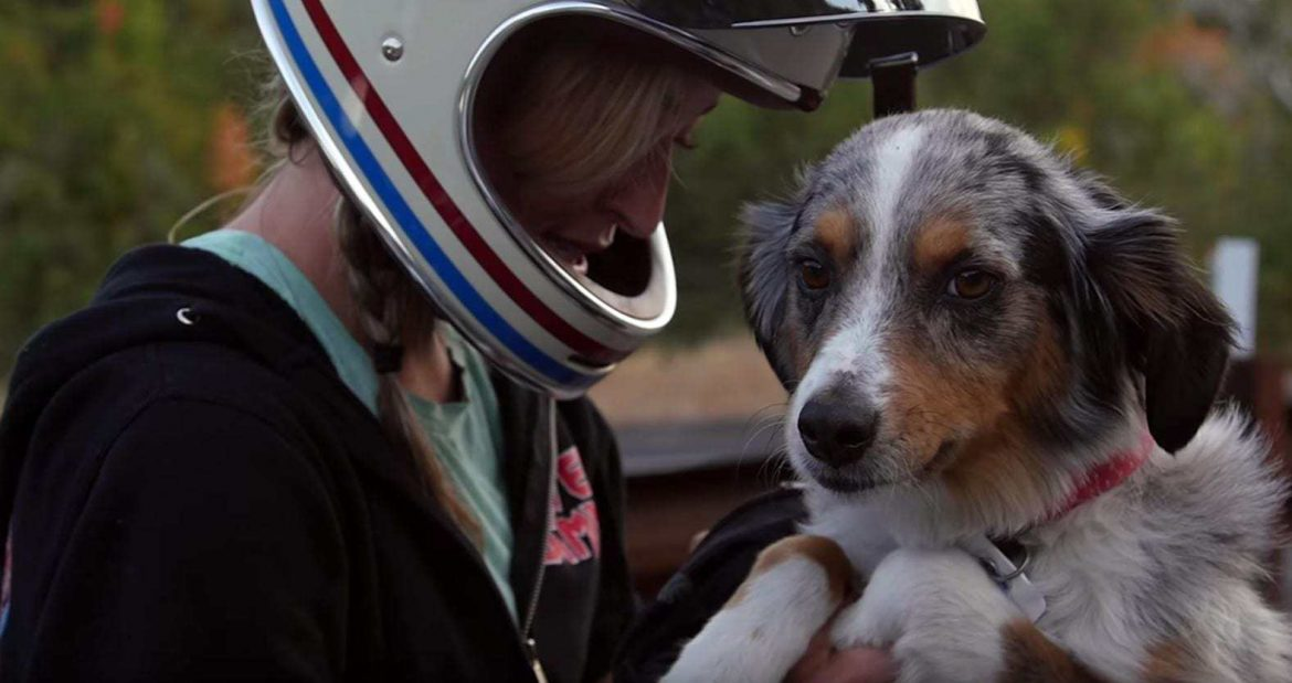 Video: Wild Women of Wasatch & Their Trail Dogs