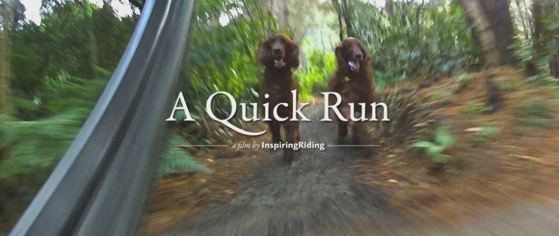 Quick Run
