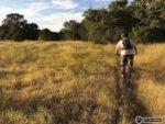 Mountain Biking Barton Creek Greenbelt
