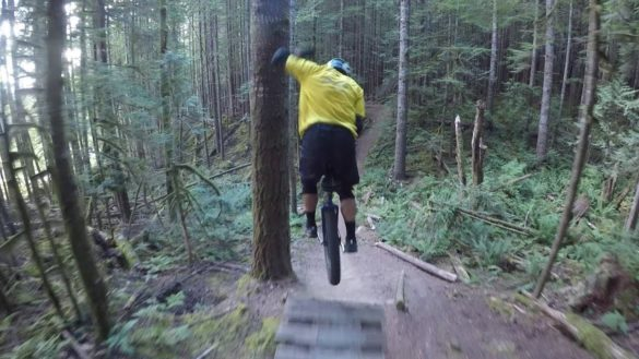 Evolution Of Balance Forest Flow Extreme Unicycling