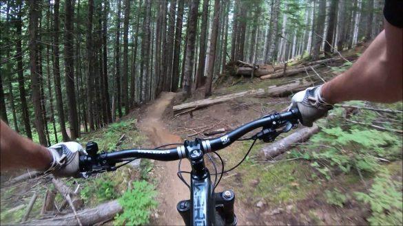Hind Sight Trail