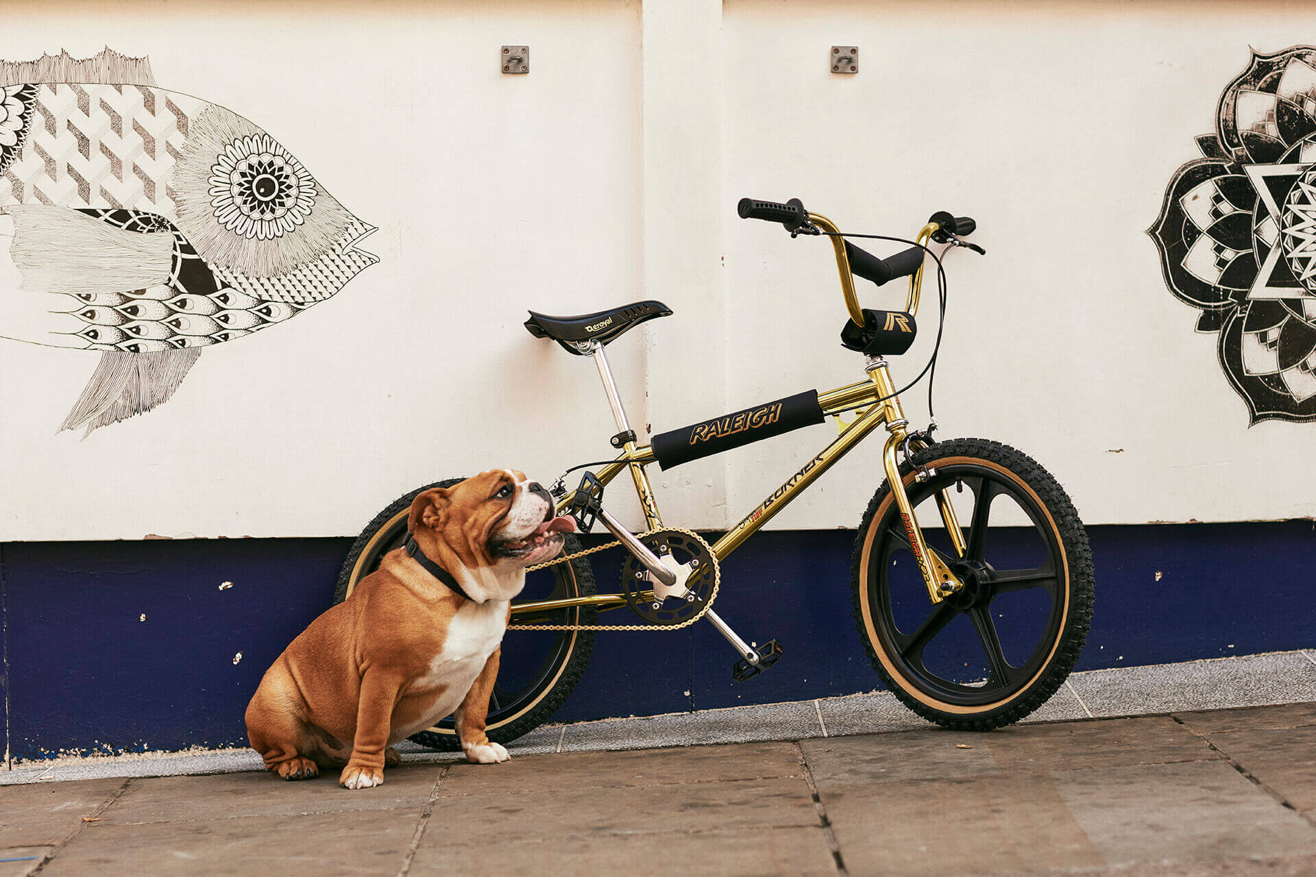 Iconic Raleigh Super Tuff Burner Relaunched. The legendary BMX bike is back.